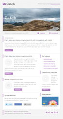 Catch Email Template - 2