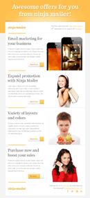 Ninja Mailer - Premium Email Template
