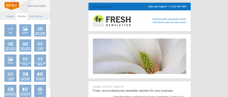 Email Templates Gifkycom - Hybrid email template